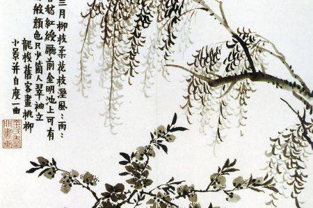 Jin Nong
