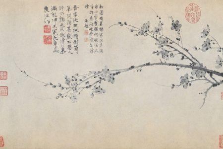 Wang Mian